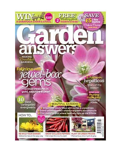 Garden Answers February 2020