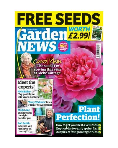 Garden News Digital issue 02/02/2021