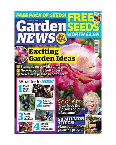 Garden News Digital Issue 03/11/2020