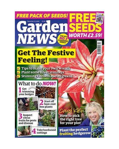 Garden News Digital Issue 08/12/2020