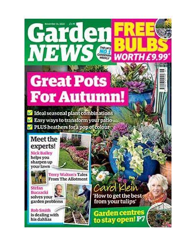 Garden News Digital Issue 10/11/2020