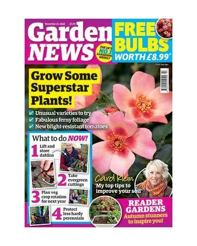 Garden News Digital Issue 17/11/2020