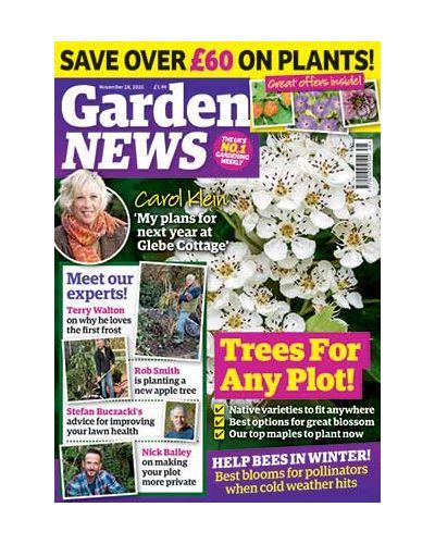 Garden News Digital Issue 24/11/2020