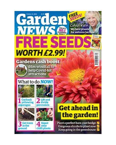 Garden News Digital Issue 27/10/2020