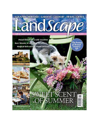 LandScape June 2019