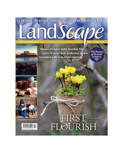 LandScape Digital issue February 2020