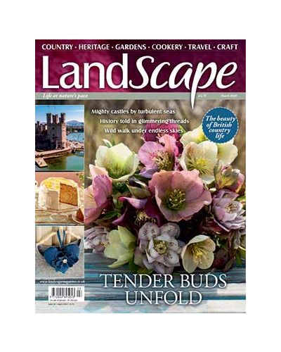 LandScape March 2020