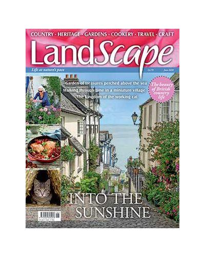 LandScape June 2020