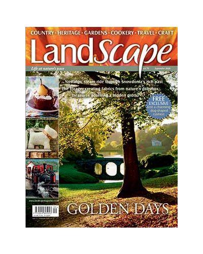LandScape September 2020