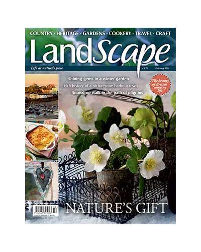 LandScape February 2021