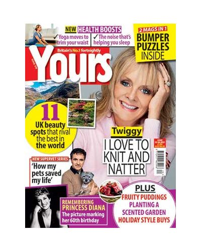 Yours Issue 378