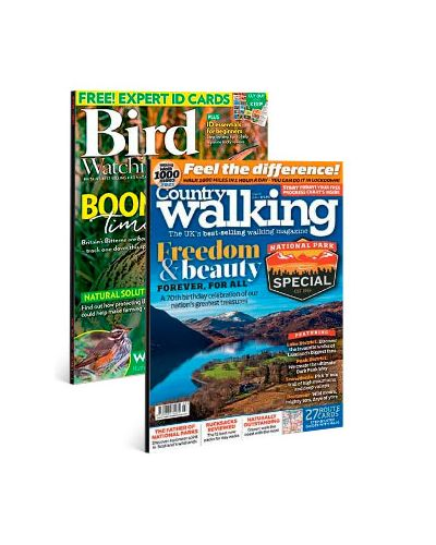 Bird Watching & Country Walking Print Subscription Pack