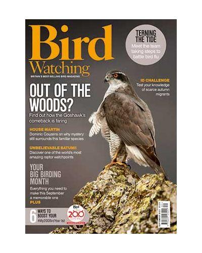 Bird Watching Magazine Subscription