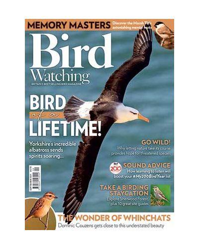 Bird Watching September 2021