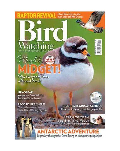 Bird Watching August 2021