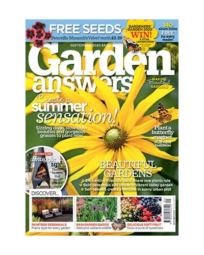 Garden Answers September 2020