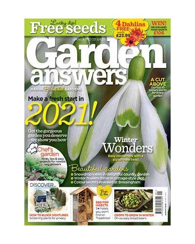 Garden Answers January 2021