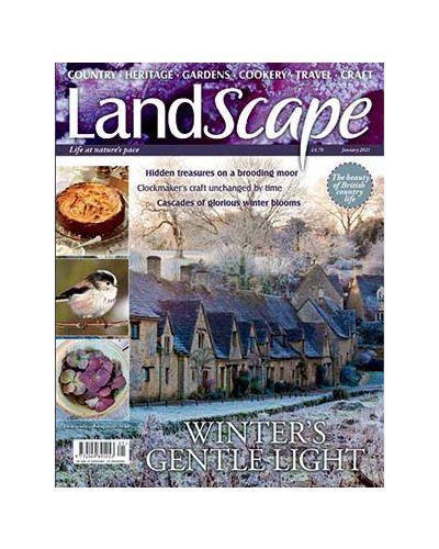 LandScape January 2021
