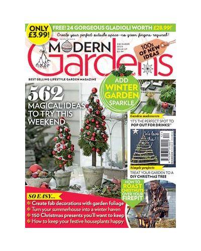 Modern Gardens December 2020