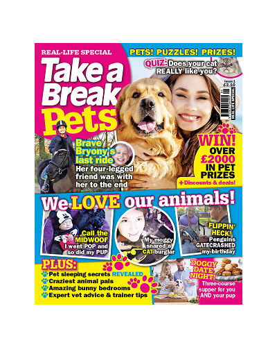 Take A Break Pets: Issue 3 (Issue 1 2020)
