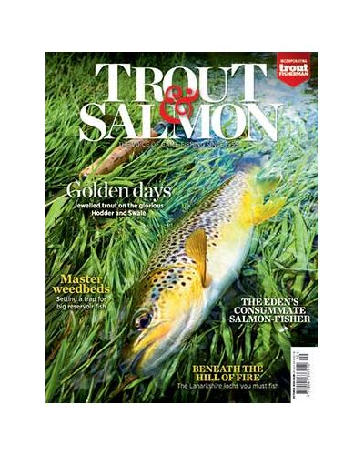 Trout & Salmon October 2020